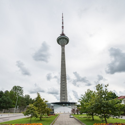Mälukohvikud on vajalikud ja Eestis hästi vastu võetud